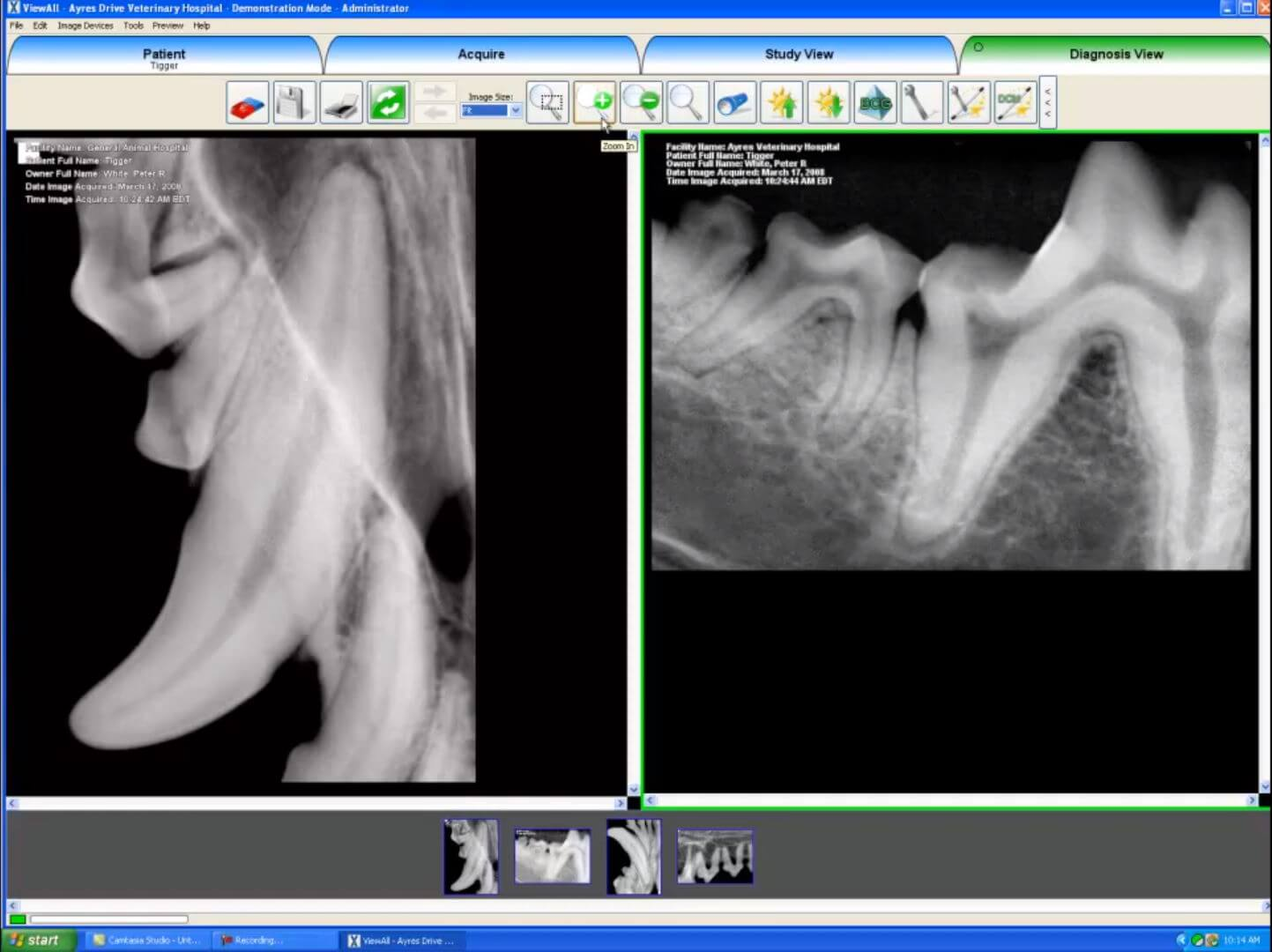 Dicom Software Diagnosis Screen Example with x-rays